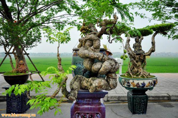 Thiết kế web bonsai, sinh vật cảnh giúp người có thú vui với các mặt hàng này có thể vào tham khảo, lựa chọn giao lưu các sản phẩm đẹp, hợp lý