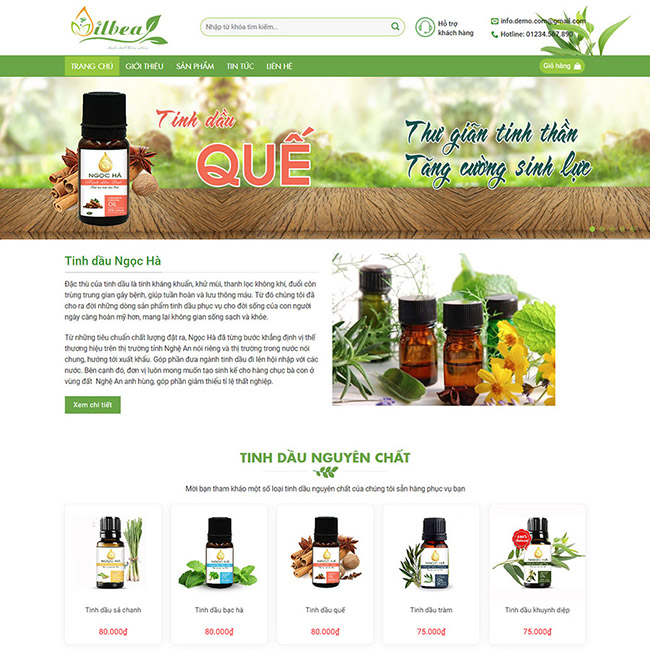 Mẫu thiết kế website bán hàng online đẹp
